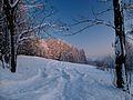 Křížlice - panoramio.jpg