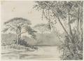 KITLV - 36C191 - Borret, Arnoldus Hyacinthus Aloysius Hubertus Maria - In the Paulus Creek, Surinam - circa 1880.tif