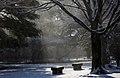 KOCIS Korea Snowfall in Gyeongbokgung 27 (11318942883).jpg