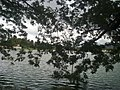 KUMARAGIRI LAKE @ SALEM - panoramio.jpg