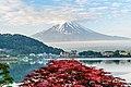 Kawaguchiko & Fuji, Japan (48852141032).jpg