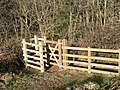 Kissing Gate above Colvithick Wood - geograph.org.uk - 109914.jpg