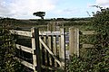 Kissing Gate to Cross the Road - geograph.org.uk - 231657.jpg