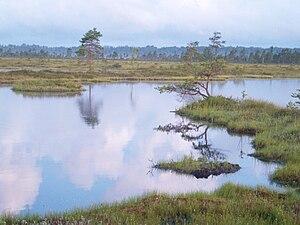 Pärnu County - Image: Kolmandikureegel