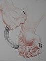 Korzhev Ivan. Bogatyr. Коржев И. Авторская серия Руки. Богатырь, 2008, цветной карандаш, 66х50см.jpg