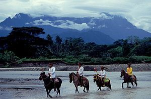 Demographics of Sabah - The West Coast Bajau horsemen in Kota Belud, with a background of Mount Kinabalu behind.
