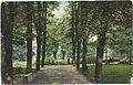 Krefeld Partie im Stadtgarten.jpg