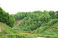 Kreis Pinneberg, Naturschutzgebiet Liether Kalkgrube 05.jpg