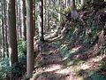 Kumano Kodo Dainichigoe World heritage27.JPG