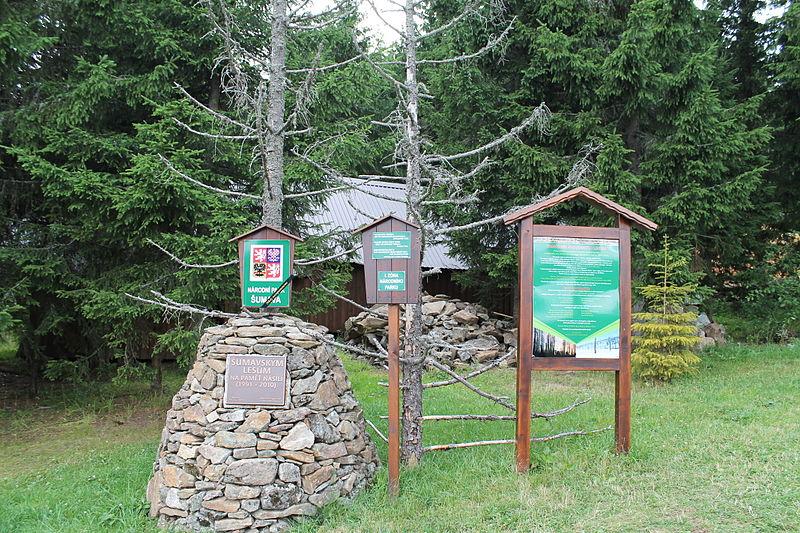 File:Kvilda, Bučina, památník lesům (2013-08-12; 01).jpg
