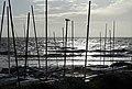 La-Bernerie-en-Retz (Loire-Atlantique) (21512785485).jpg