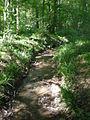 La Neuville-en-Hez, ruisseau.JPG