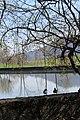 Lac de Bret - panoramio (8).jpg