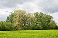 Lage - 2015-05-17 - LIP-009 Hardisser Moor (19).jpg