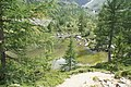 Lago d'Arpy - panoramio (10).jpg