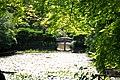 Lake outside Ryoan-ji Temple.jpg