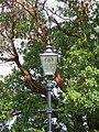 Lamp standard - geograph.org.uk - 563996.jpg