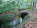 Landschaftsschutzgebiet Waldgebiete bei Dielingdorf und Handarpe LSG OS 00025 Datei 21.jpg