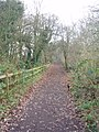 Lane leading to Sandwell priory - geograph.org.uk - 636391.jpg