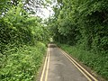 Lane with double yellow lines to the east of Margam Country Park - geograph.org.uk - 1081004.jpg