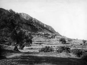 Lapithos, Plakes, landskapsbild från NO - SMVK - C00798.tif