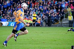 Leo Smith (hurler) - Leo Smith in action for Portumna in 2013