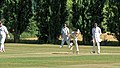 Little Hallingbury CC v. Thorley CC at Gaston Green, Essex 011.jpg