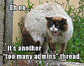 Lolcat - Too Many Admins.jpg