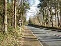 Long straight descent, Rivermead Way, Rogerstone - geograph.org.uk - 1727293.jpg