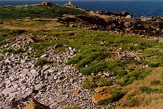 Annet, Isles of Scilly island