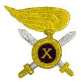 MIL ITA ass 06 X reggimento arditi (a).png