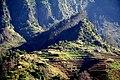Madeira Terrassen.jpg