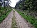 Main track into Callan's Lane Wood - geograph.org.uk - 410867.jpg