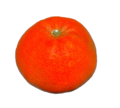 Mandarine on white background.png