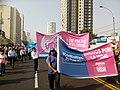 Marcha por la Vida 2018 Perú (11).jpg