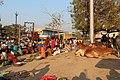 Market in Adalaj 02.jpg
