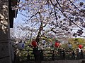 Marunouchi, Matsuyama, Ehime Prefecture 790-0008, Japan - panoramio (50).jpg