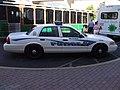 MauiPoliceCar.JPG