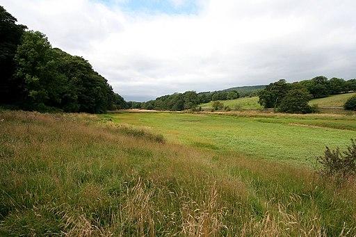 Meadow, Lindley Wood Reservoir - geograph.org.uk - 1444865