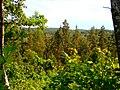 Medumi Parish, Latvia - panoramio (8).jpg