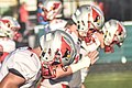 Mentor Cardinals (28818956854).jpg