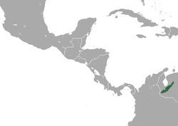 Merida Small-eared Shrew area.png