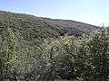 Mese - panoramio (1).jpg