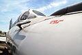 MiG-21 img 2495.jpg