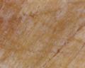 Microscopio - Tabla de madera de cocina 3.png