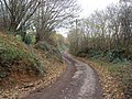 Minor Road to Kennford - geograph.org.uk - 1058920.jpg