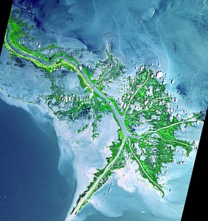 Mississippi River Delta - 2001 Image of the active delta front before Hurricanes Katrina and Rita destroyed much of the delta in 2005