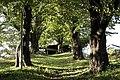 Miyagawa, Chino, Nagano Prefecture 391-0013, Japan - panoramio (2).jpg