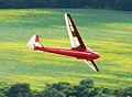 Model Glider 1.jpg