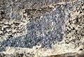 Molybdenite vein in alkaline igneous host rock (Oligocene, 24-33 Ma; Climax Mine, Fremont Pass, Colorado, USA) 5 (19877584505).jpg